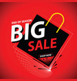 big sale banner promo theme vector image