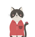 cute cat little kitty with ladybug on tail vector image vector image