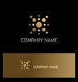 dot star technology gold logo vector image vector image