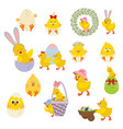 easter chicken set vector image