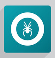 flat spider icon vector image