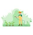gardener girl is watering plants using spray hose vector image