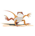 kung fu of the bearded dragon vector image vector image