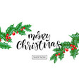 merry christmas holiday shop sale web banner vector image vector image