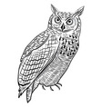 Owl bird as halloween symbol vector image