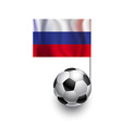 Soccer Balls or Footballs with flag of Russia vector image vector image