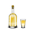 tequila bottle and glass shot with golden alcohol vector image