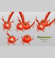 Tomatoes splash isolated realistic