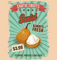 exotic fruit santol retro poster with tropic food vector image vector image