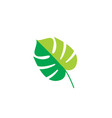 leaf logo element eco vector image vector image