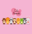 set cute animals wildlife fauna vector image