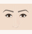 classical shape of eyebrows microblaining and vector image vector image
