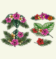 colorful vintage tropical floral composition vector image