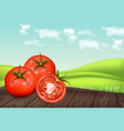 tomatoes on wooden table realistic green vector image vector image