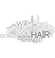 what your hair text word cloud concept vector image vector image