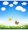 butterfly and grass vector image