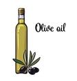 olive oil bottle with black olives vector image