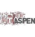 aspen text background word cloud concept vector image vector image