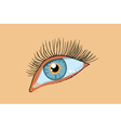 blue female eye vector image vector image