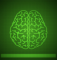 Human Brain Concept on Green Background vector image vector image