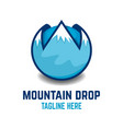 mountain drop logo vector image