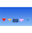panties on the rope vector image vector image