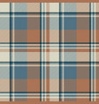 pastel color classic beige plaid seamless fabric vector image