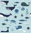 sea life whales dolphins seamless pattern vector image