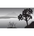 Silhouette of tree in lake vector image vector image
