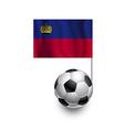 Soccer Balls or Footballs with flag Liechtenstein vector image vector image