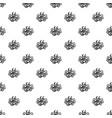 bio calendula pattern seamless vector image