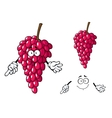 Cartoon bunch of red grape fruit character vector image vector image