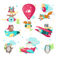 cute funny pilot animals isolated vector image vector image