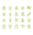 danger insect simple color line icons set vector image