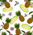 Pineapple pattern design vector image