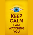 Poster Keep Calm I am watching you vector image