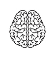Human Brain Outline Top View vector image