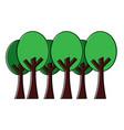 trees forest park natural botanical ecology vector image