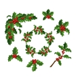 Christmas berry decoration set vector image