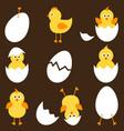 set cartoon chickens vector image vector image
