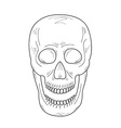 Sketch of the skull with open mouth