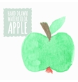 Watercolor or aquarelle apple vector image