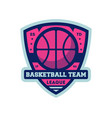basketball professional team vintage label vector image vector image