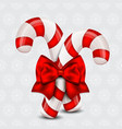 Christmas Candy Cane on a holiday background vector image