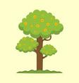 cute spring season tree graphic vector image