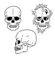 human skulls sketch side and front views vector image vector image