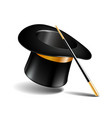 magic hat and wand isolated on white vector image vector image