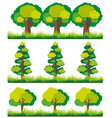 seamless background with trees on grass vector image vector image