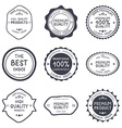 set retro vintage hand draw badges and labels vector image vector image