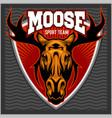 sport moose team logo vector image vector image
